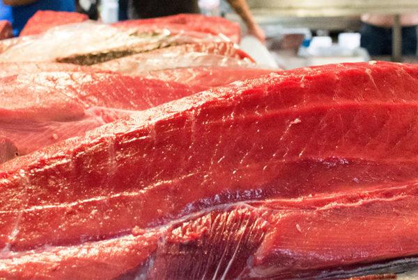 pescado sushi orimaki